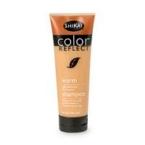 Shikai Color Reflect Warm Shampoo (1x8 Oz)