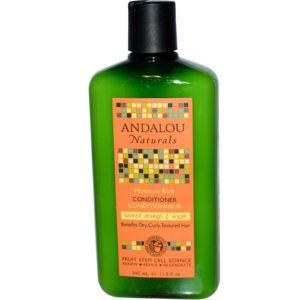 Andalou Naturals Moisture Rich Sweet Orange & Argan Shampoo (1x11.5 Oz)